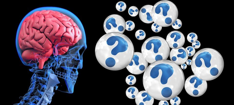 Hersenen, creatine