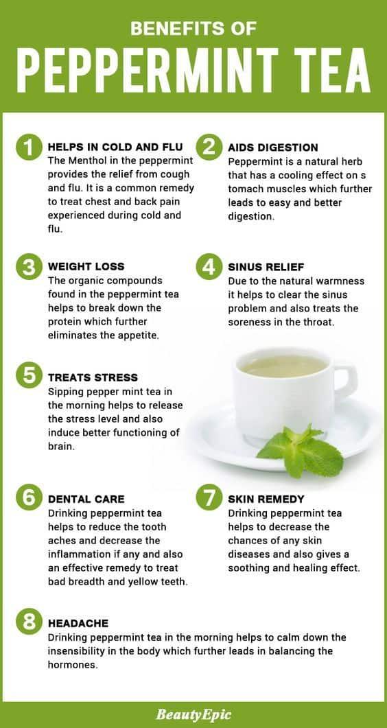 infograpich mint tea